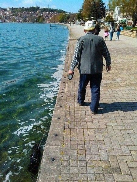 Дед герасим выгуливает собаку , прикольные картинки с надписями