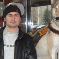 Аватар Сергея Домникова