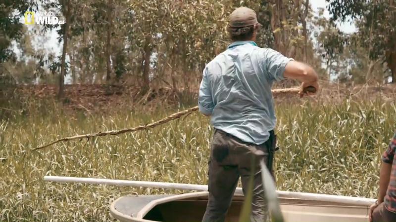Зеленый ковбой из Австралии. [s03 e01] Атака крокодилов на реке Финнис (2018) [P1. Велес, С.Войнич] 1.08 ts