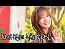 [S영상] '2019 S/S 헤라서울패션위크' 런웨이 선 차승원-배정남-이기우, 포토월 참석