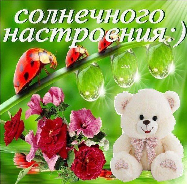 http://cs409126.vk.me/v409126786/306b/mGqMrVwPd18.jpg