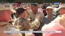 Новости на Россия 24 Разминирование и восстановление Россия помогает Сирии вернуться к мирной жизни