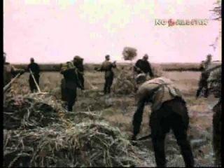 Военные сороковые. Песни о войне 1941-1945 гг.