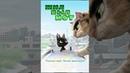 Жил был кот Rudolf The Black Cat Мультфильм для детей в HD