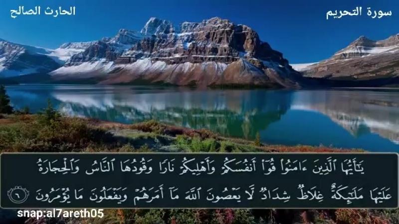 يا أيها الذين آمنوا قوا أنفسكم و أهليكم نارا .. تلاوة بديعة للقارئ الحارث الصالح وفقه الله