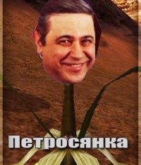 Тоня Старк, 7 декабря , Пермь, id217499403