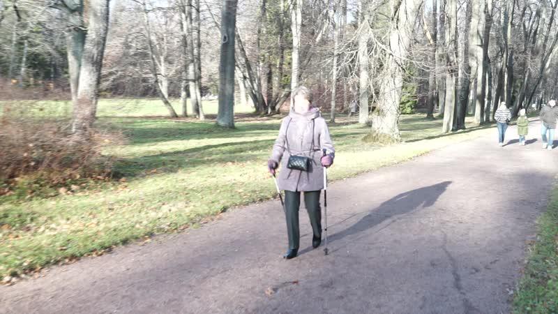 Скандинавская ходьба после эндопротезирования тазобедренного сустава