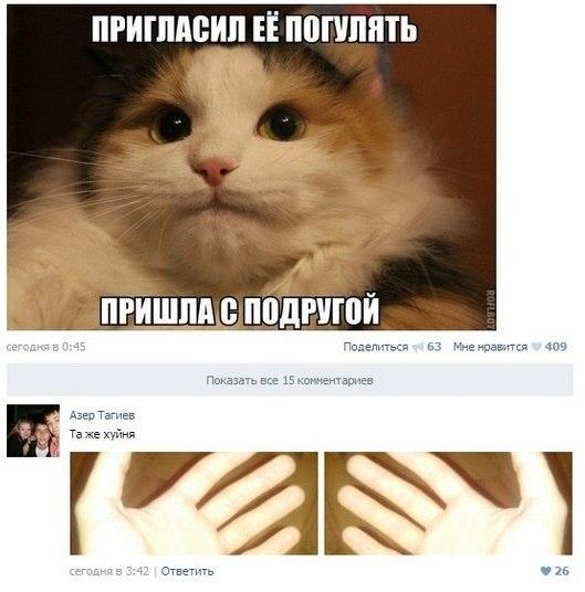 SoComMTOf4o.jpg