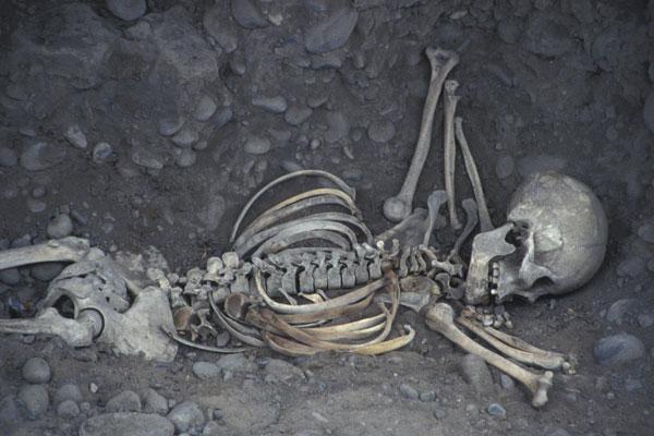 В Ростовской области студентки выкопали тело женщины, чтобы сделать из ее черепа пепельницу