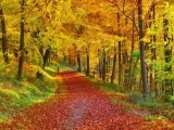 Осень (Фредерик Шопен)