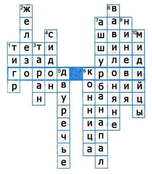 Учебники По Русскому Языку 7 Класс Ладыженская 2013 Новый