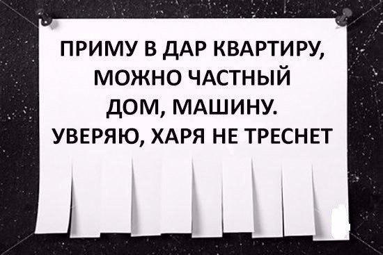 Фото №456240104 со страницы Сергея Баранова