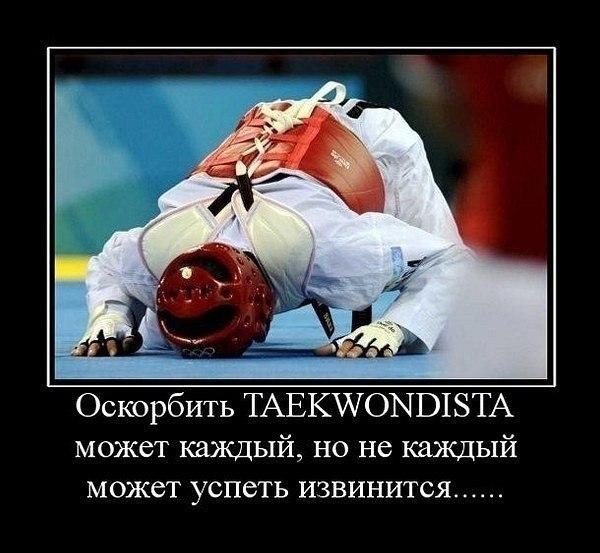 Taekwondo wtf тхэквондо втф нижний тагил