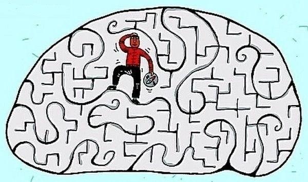 Как на мозг влияет время суток 1. С 6 до 7 утра – «окно», когда лучше всего работает долговременная память, вся полученная информация в этот промежуток усваивается легко. 2. С 8 до 9 включается логическое мышление, это наиболее подходящее время для любой деятельности, связанной - одновременно - с запоминанием и аналитикой. 3. С 9 до 10 утра – оптимальные часы для работы с информацией и статистикой. 4. С 11 до 12 дня эффективность интеллектуальных функций снижается, стало быть, можно…