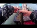 Твичинг ВТОРАЯ часть рыбалки в Клин Малиновке был разловлен поинтер 128 с АЛИ