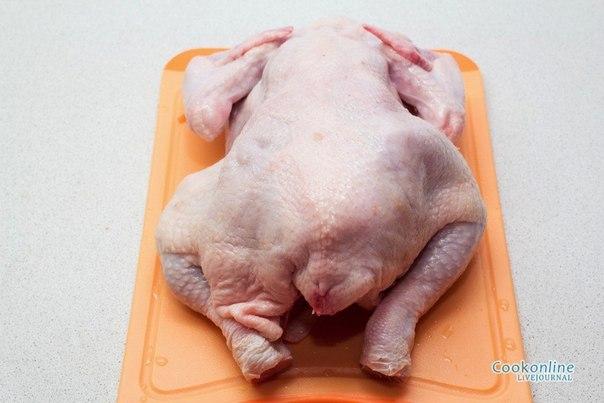 лечение куриных жопок с фото