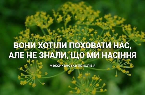 Благодаря концерту в память Кузьмы Скрябина были куплены два реанимобиля для украинской армии - Цензор.НЕТ 3318