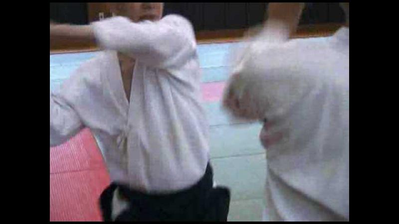 Aikido - Boken INABA MINORU KASHIMA SHIN RYU KENJUTSU-4.avi
