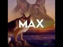 Max, idi na hui