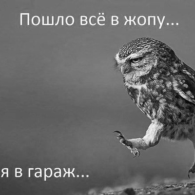 Андрей Савичев, 15 июня 1988, Вожега, id37644353