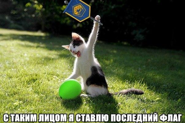 нки онлайн: