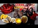 Продукты которые едят чтобы стоял продукты повышающие потенцию мужчин