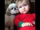 Собаки — лучшие друзья человека ❤️😄