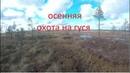 Осенняя охота на гуся в Архангельская область 2018