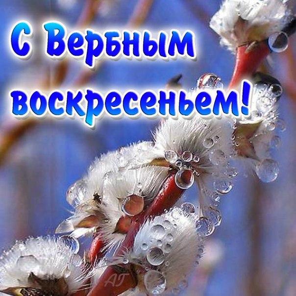 Фото №301617540 со страницы Сергея Романова