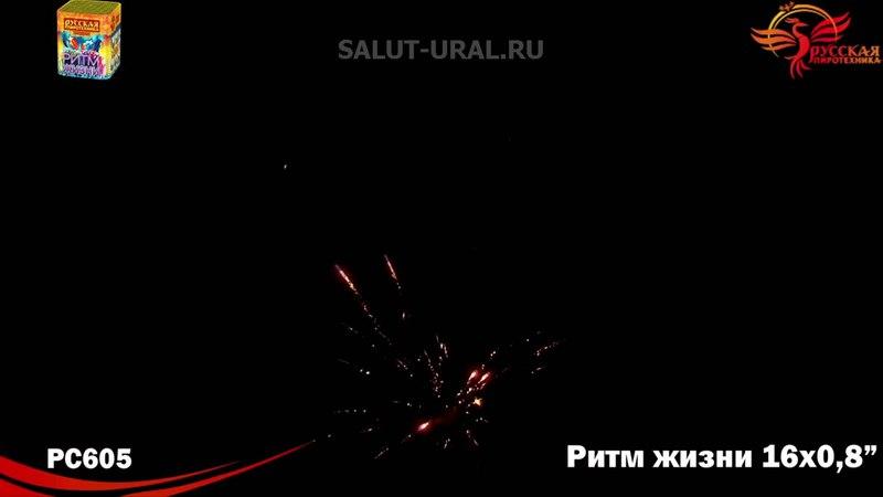 РС605 Салют (0,8x16) Ритм жизни