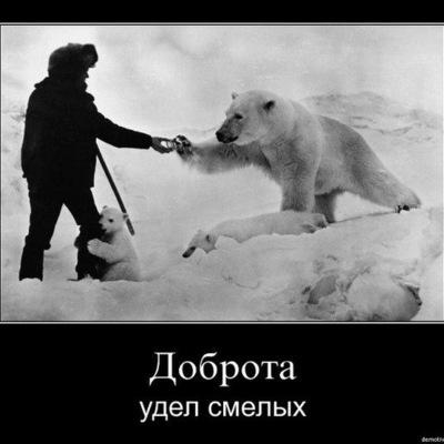 Николай Ляпин, 29 ноября 1965, Новосергиевка, id195046798