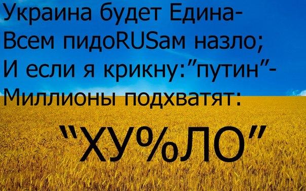 Допросом крымской активистки Богуцкой обеспокоена ОБСЕ - Цензор.НЕТ 104