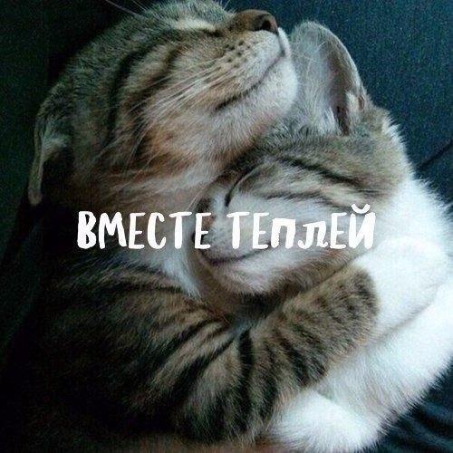 Фото №456253556 со страницы Надежды Гордиенко