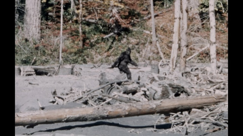 1967 Patterson Gimlin Film of Bigfoot