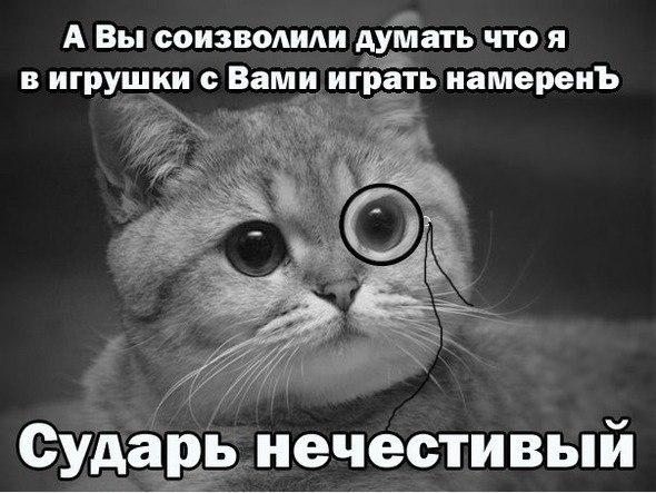 cyoRuYQXZOQ.jpg