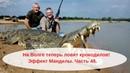 На Волге теперь рыбаки ловят крокодилов на спиннинг! Эффект Манделы. Часть 48.