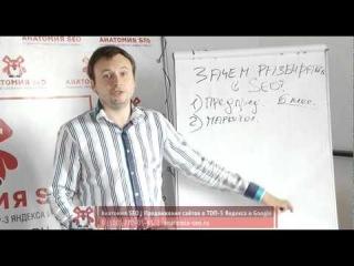 Урок №3: Зачем разбираться в SEO. Видеокурс Магия SEO: SEO по 5 минут в день. Анатомия SEO