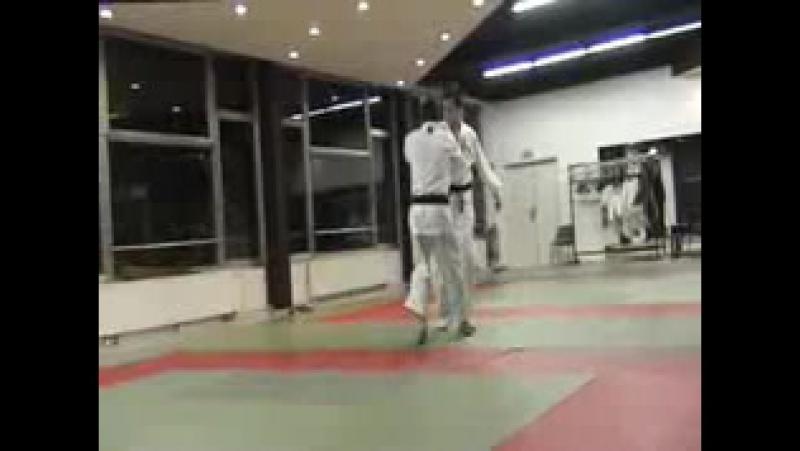 YouTube jujitsu tai jitsu