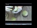 Фирдаус Батдаловой Тема Наливное яблочко с золотыми листиками. Имитация камня Лизардит