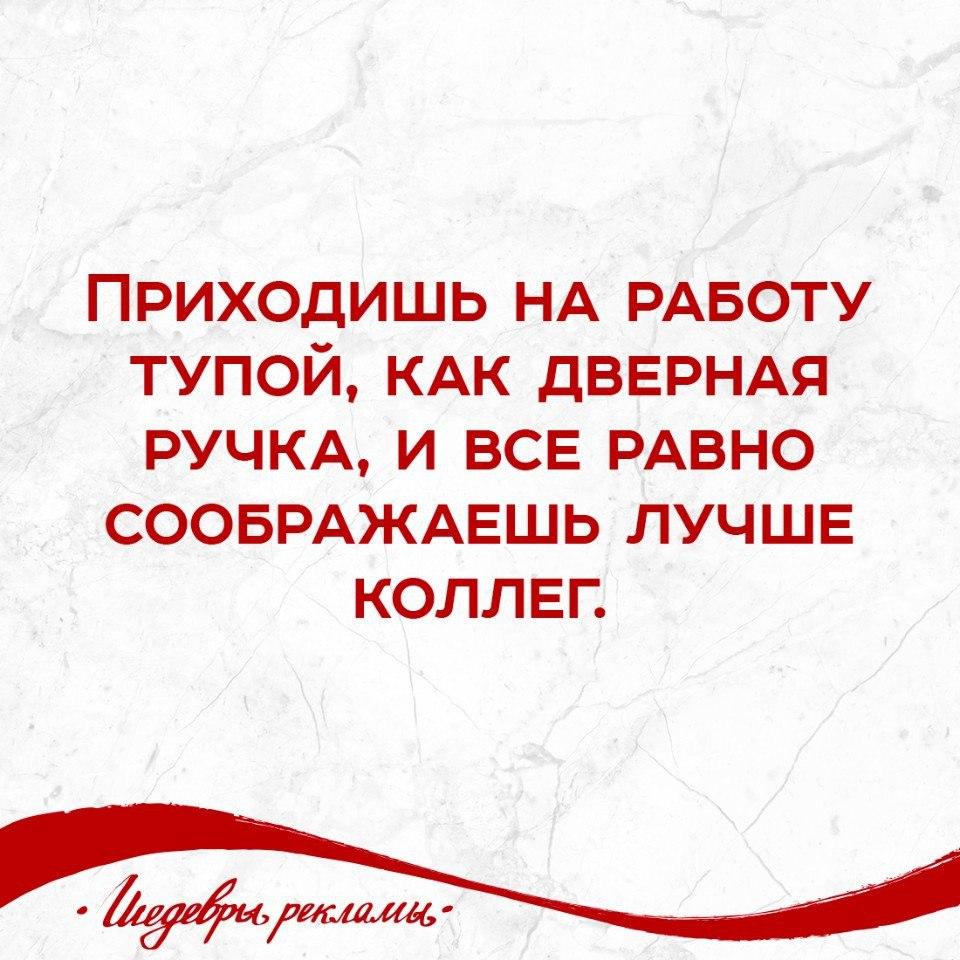 https://pp.vk.me/c543104/v543104715/1fb79/C9VJ7l3iOSI.jpg