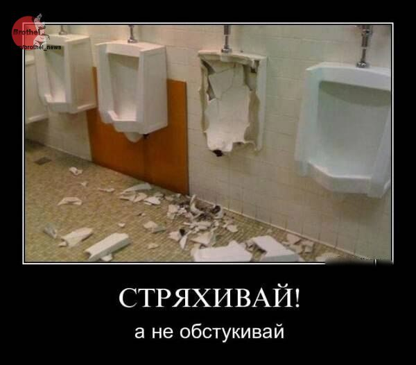 https://cs7056.vk.me/c543103/v543103588/187ef/OEwiMwUrfBc.jpg