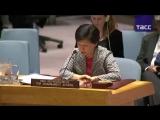 Заседание Совбеза ООН по Скрипалю