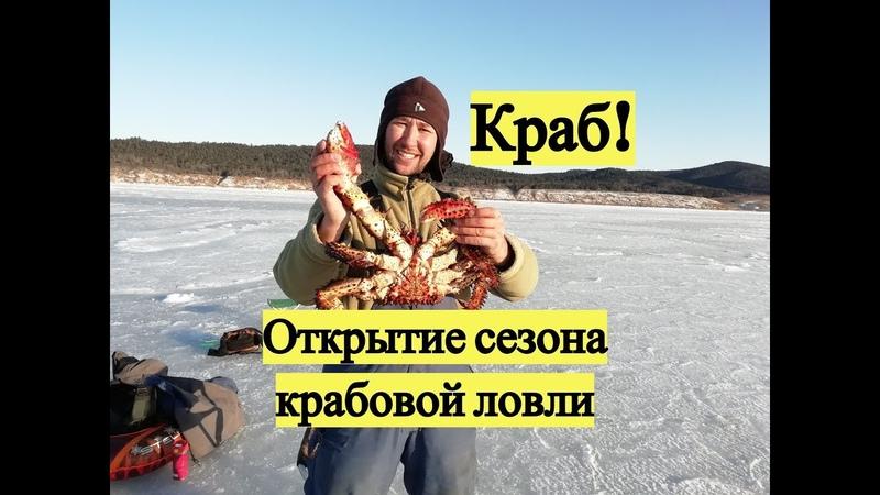 Краб Открытие сезона крабовой ловли