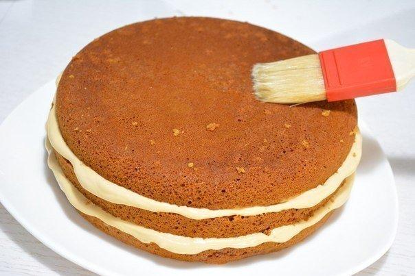 Крем медового торта рецепт с фото