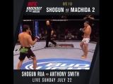 #UFCHamburg KO of the Week: Shogun Rua