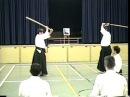Aikido Aikiken Kawahara Yukio Shihan excellent instruction