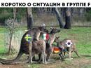 Александр Спирин фото #1