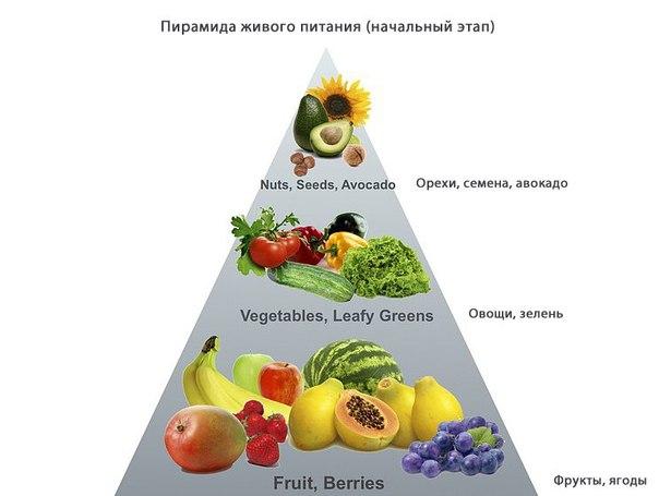 ecook здоровая еда в мытищах