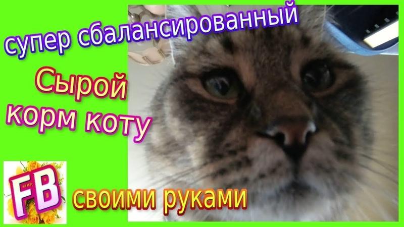 FB Самый Сбалансированный СЫРОЙ КОРМ для кошек и котов