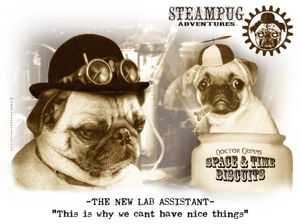 Steampug Adventures by Doctor Grymm (Фото 7)